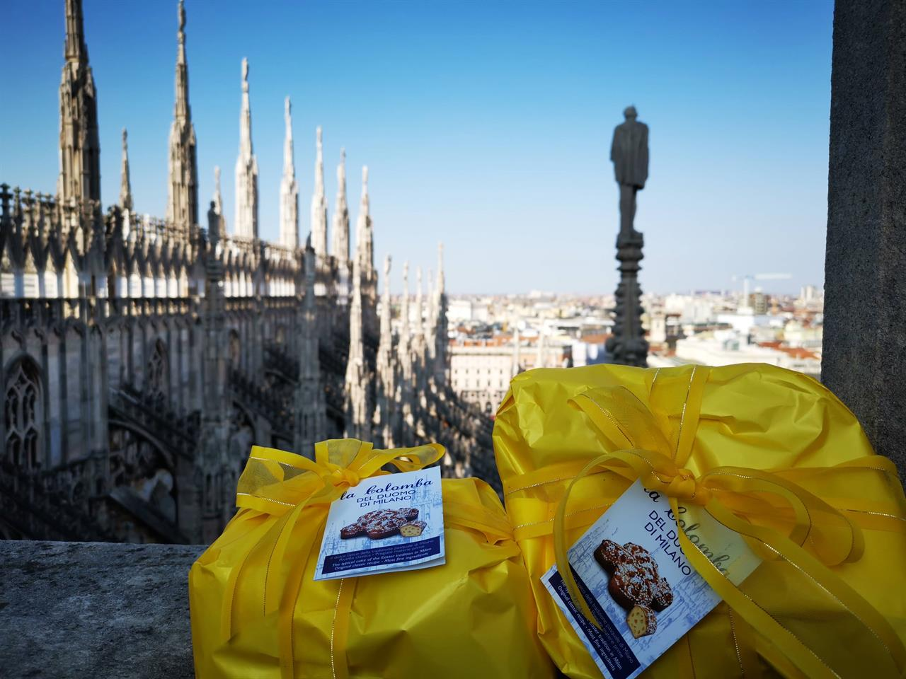 Colomba Duomo spring 2019